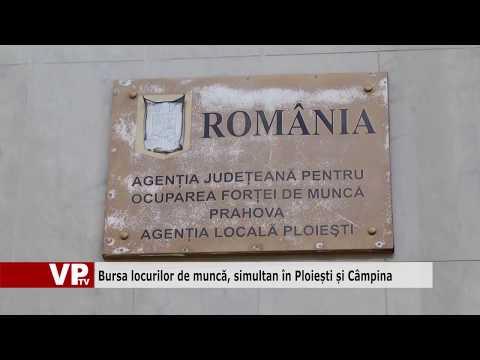 Bursa locurilor de muncă, simultan în Ploiești și Câmpina