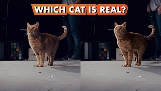 Which Goose the Cat is Real? | Making Marvel Studios' Captain Marvel