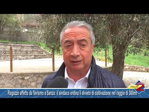 Ragazzo affetto da favismo a Sanza: il sindaco ordina il divieto di coltivazione