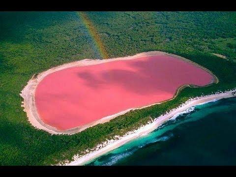 Розовое Озеро Хиллер.Австралии(Pink Lake