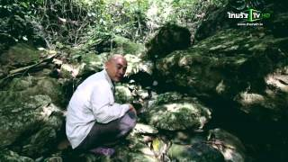 คนเบิกทาง : สัมผัสชีวิตเสี่ยงตายของคนเก็บรังนกแห่งเกาะบอเนียว มาเลเซีย16 มี.ค.58 (1/4)