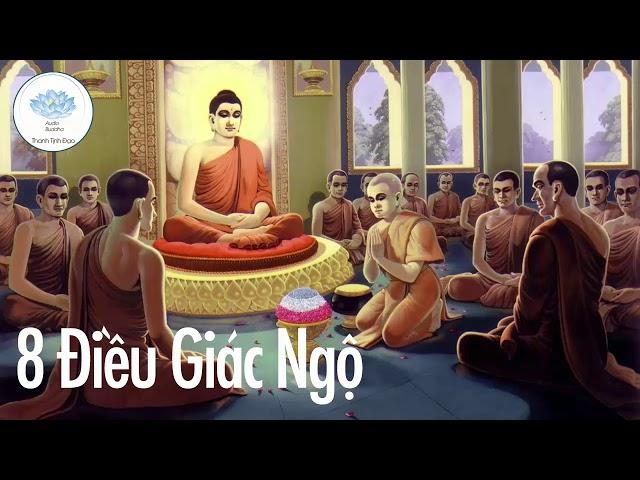 Giác Ngộ Để Tâm Luôn Thanh Tịnh Bớt Khổ Trong Cuộc Sống – Phật Dạy 8 Điều Giác Ngộ Của Bậc Đại Nhân