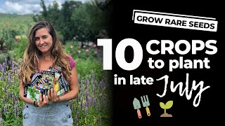 Top 10 Crops To Plant In Late July