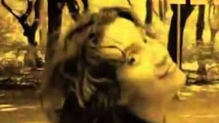 Celine Dion - Because You Loved Me lyrics --BETTER VERSION--