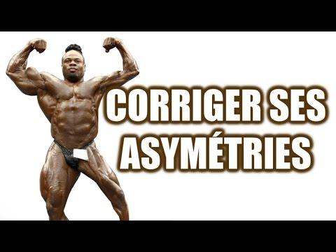 Comme dessiner les muscles du dos