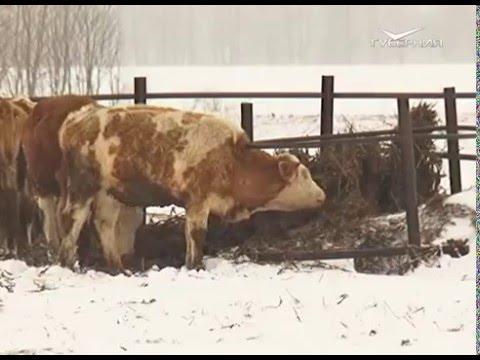 Аграрии области готовятся к весенним полевым работам