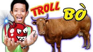 Tony | Thằng Ngáo Lấy Pháo Pokemon Troll Động Vật - Troll Animal