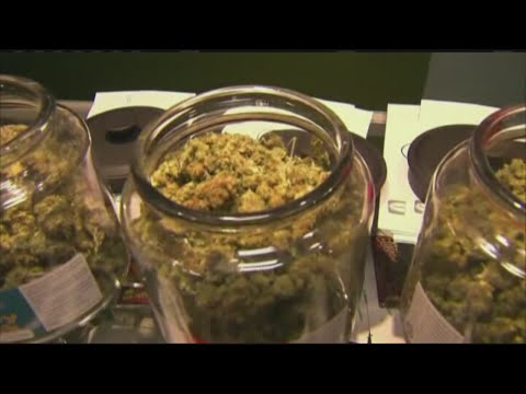 Marijuana reform bill awaits Gov. Bakers approval