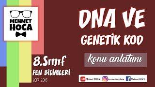 1) 8.sınıf Fen Bilimleri DNA ve Genetik Kod Konu Anlatımı I 2017-2018