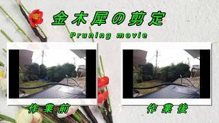 https://www.youtube.com/watch?v=KAE67vYuTc4
