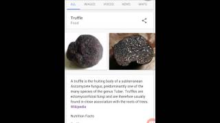 truffle expensive food