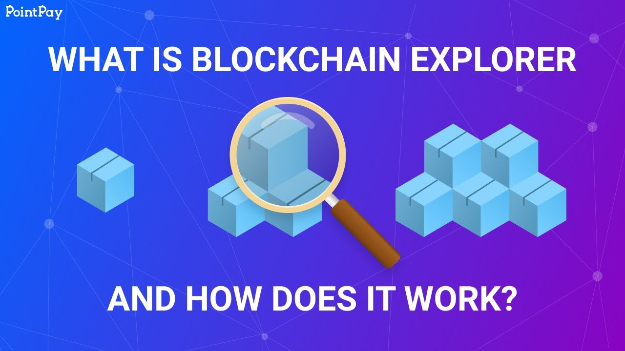 What is a blockchain explorer and how does it work?