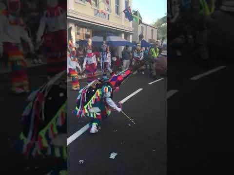 Download Warwick Gombeys Bermuda HD Video