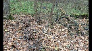 Появились фото и видеоматериалы с места убийства 16-летнего нижнекамца