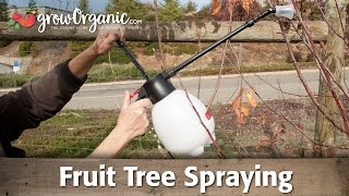 Fruit Tree Spraying For Dormant, Bare Root Trees