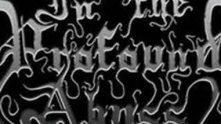 In the profound abyss - 08 - In the profound abyss (Album: Thorns Inside Flesh)