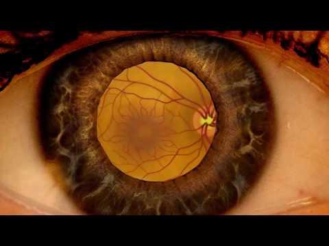 Medicul oftalmolog Shirshov