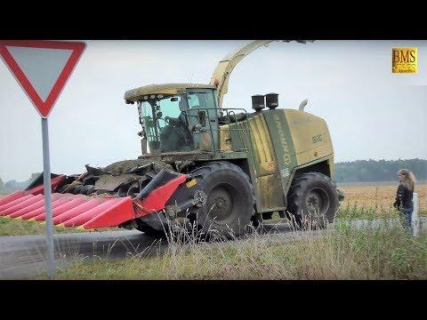 Maisernte - LKS Lieschkolbensilage - Krone BigX 1100 Maispflückvorsatz - Wildschweine Maize harvest