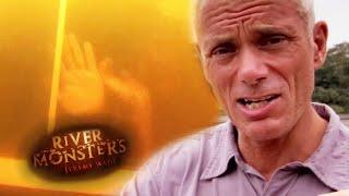 Piranha Horror Stories | River Monsters