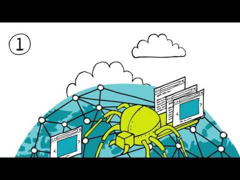 Das Netz - Wie funktioniert eine Suchmaschine?