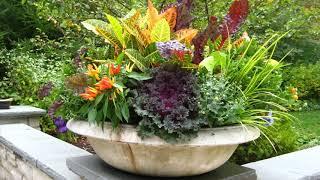 Coolest Flower Planters Ideas