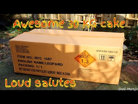 Leopard  1 3G cake, 30 Kg, awesome audio :) - Shell-Martijn