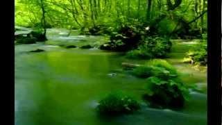 【癒し系】 せせらぎ - Stream (4)  3時間 3 Hours Nature Sounds 【集中力】