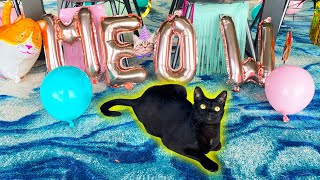 CAT'S FIRST BIRTHDAY PARTY