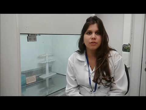 Mecanismo de insulina e glicose