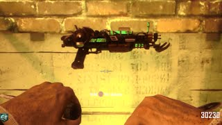 Black Ops 2 Ray Gun Mark 2 EVERY TIME GLITCH!