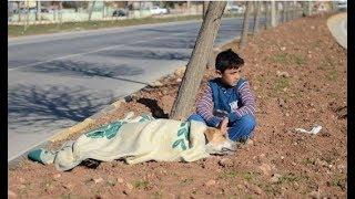 Мальчик беженец около часа стоял на коленях, обнимал и укрывал одеялом друга. Прохожие плакали!
