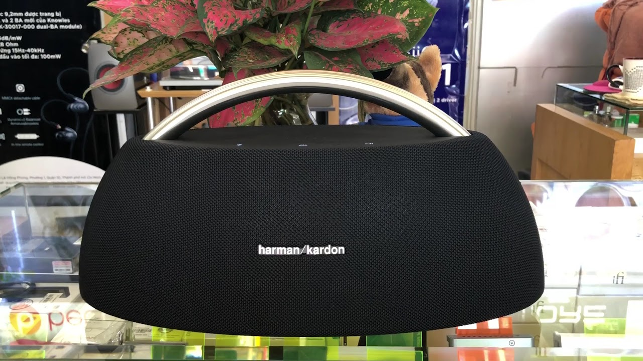Harman/Kardon Go&Play mini