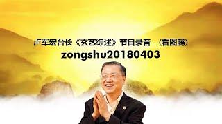 Zongshu20180403 卢军宏台长《玄艺综述》节目录音  (看图腾)