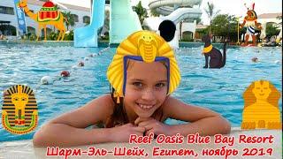 Reef Oasis Blue Bay Resort & Spa 5* Отдых в Шарм-Эль-Шейхе, Египет 15-22.11.19 - My Little Sokol