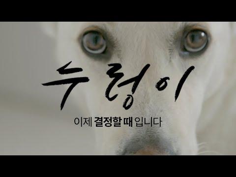 다큐멘터리 영화 '누렁이' 본편