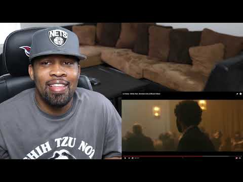 Lyrically Incredible!! Lil Dicky - Molly feat  Brendon Urie, The Antagonist, & Lion King | Reaction