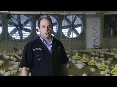 Meet the Chicken Farmer - David Speller