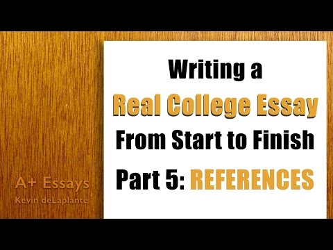 essay typer reviews