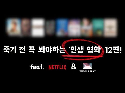 영화 2000편 넘게 본 영화 유튜버가 추천하는 인생영화!