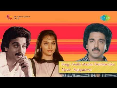 Raaja Paarvai | Andhi Mazhai song