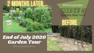 End of July 2020 Garden Update | Zone 5 | Upstate New York