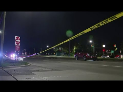 Girl fatally struck by vehicle while crossing Telegraph Road in Dearborn Heights