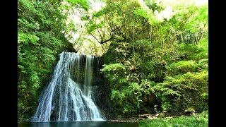 千葉県房総半島に幻の滝をみにゆく