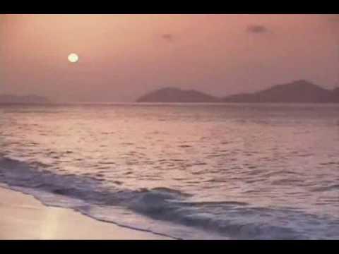 Margaritaville (1977) (Song) by Jimmy Buffett