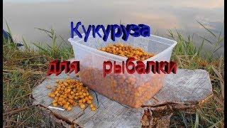 Как приготовить кукурузу для рыбалки в мультиварке