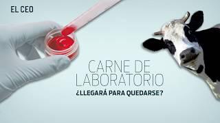Carne de laboratorio, ¿Llegará para quedarse?