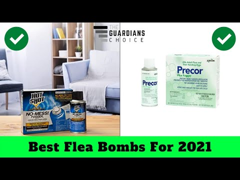 10 Best Flea Bombs For 2019 - The Guardians Choice