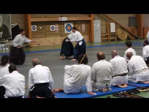 Aikido Stage Luc sur Mer 2019 Demo 1 Kumijo X. DUFAU