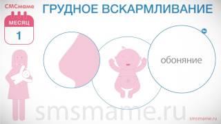 Ребенку 1 месяц - рост и вес, грудное вскармливание и колики.