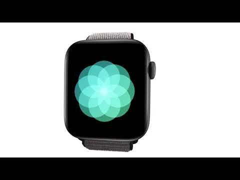 Apple Watch Series 5 en MacCenter